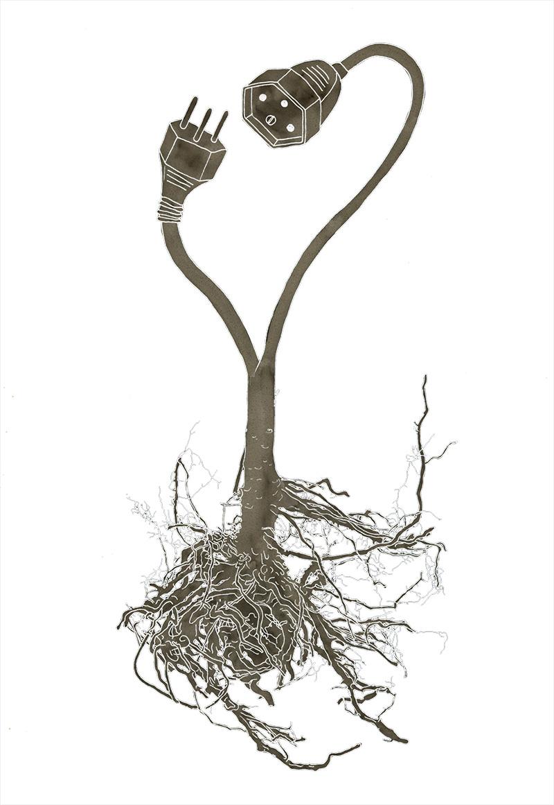Root Plug