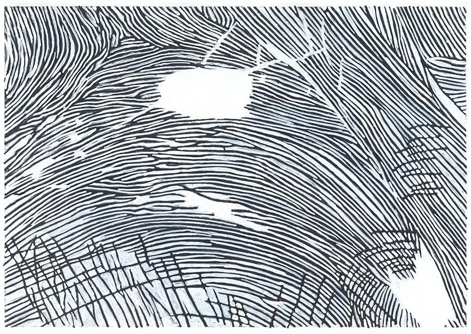 Landscape from Fingerprint